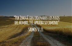 Por Jehová son ordenados los pasos del hombre, Y él aprueba su camino. (Salmos 37:23)