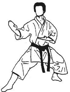 867c4de7345e79267f57f0fddada55f4--karate-kata.jpg