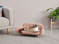 Moby Medium Pet Sofa, Velvet Vintage Pink and Copper Pet Beds, Dog Bed, Animal Room, Dog Furniture, Cat Room, Cat Accessories, Diy Stuffed Animals, Cat Life, Crazy Cats