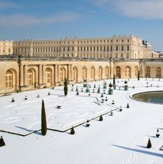 The Palace this winter