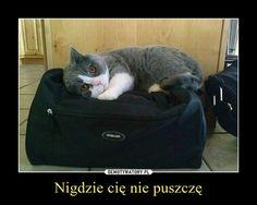 Nigdzie cię nie puszczę –