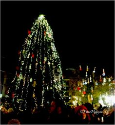 『Karácsonyi Vásár』 Christmas Market in Budapest Hungary, Budapest, Christmas Tree, Culture, Japan, Marketing, Holiday Decor, Teal Christmas Tree, Xmas Trees