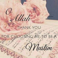 Jannah is the best reward, for those whom hold in Deen ( Islam ) #Jannah