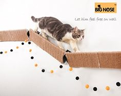 Why we recommend it to youAs animal expert said if we can't satisfy the initial need of our petsthen many problems can be lead to us and mess up our happy life.What is the initial need of our CATS th. Diy Cat Tree, Triangle Wall, Scratching Post, Cat Supplies, Wall Mount, Psychic Readings, Pet Stuff, Pets, Happy Life