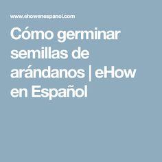 Cómo germinar semillas de arándanos | eHow en Español