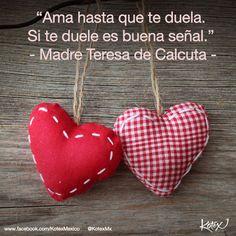 """Ama hasta que te duela. Si te duele es buena señal."" Madre Teresa de Calcuta #LOVE #Quotes #Frases"