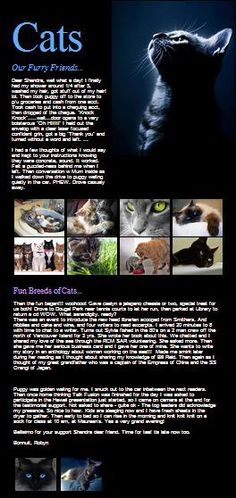 "World's First Video Newsletter of the Week! Click ""Like"" & See the beautiful Video Newsletter created by Talk Fusion Associate Robyn Hume of Canada. She showcases her sleek, gorgeous cats! Come back often to view other beautiful Video Newsletters created by Talk Fusion Associates around the world! Get Your Video Newsletter For Your Ministry & Business Today!"