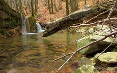 Park prirode Učka - Parkovi Hrvatske