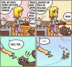 Cómic gato en casa nunca se conforma