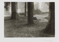 Josef Sudek, A walk in the Royal Garden, 1946.