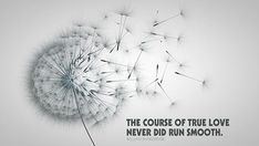 The course of true love never did run smooth.
