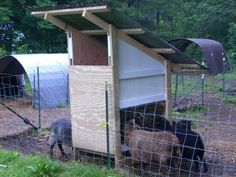 low waste hay feeder