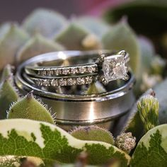 cool vancouver wedding // The bride's ring set plus the groom's wedding band! Gorgeous! #  by @winkphotography  #vancouverwedding #vancouverweddingjewellery #vancouverwedding