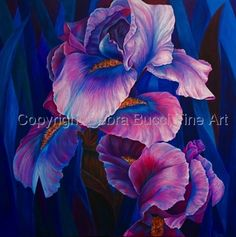 Iris Obsession - Private Collection
