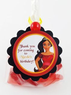 Disney Elena of Avalor birthday party favor bags.  Perfect for any party favors, treat bags, goodie bags, etc