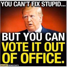 Protest Signs, Political Cartoons, Trump Cartoons, Stupid, Donald Trump, Funny Memes, Shit Happens, Funny Nursing, Nursing Quotes