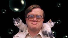 Gallery for bubbles trailer park boys wallpaper - image Trailer Park Boys Ricky, Bubbles Trailer Park Boys, Puppy Training Guide, Puppy Training Schedule, Ernest Hemingway, Bubble Cat, Kitten Accessories, Boy Meme, Boys Wallpaper