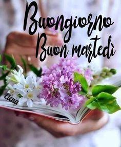 Joelle, Cavalier King Charles, Happy Day, Good Morning, Cards, Sleep, Buen Dia, Bonjour, Maps