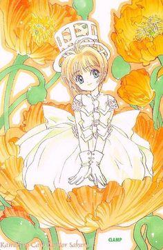 Dreamworks, Cardcaptor Sakura, Shoujo, Anime Manga, Princess Zelda, Kawaii, Animation, Japan, Wallpaper