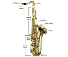 867f43e9a7e74ad9e6534008bf09adcd saxophones shopping online 294 best saxophones images jazz musicians, jazz artists, music