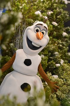 """There are big """"Frozen"""" changes headed to Disneyland! #Frozen"""