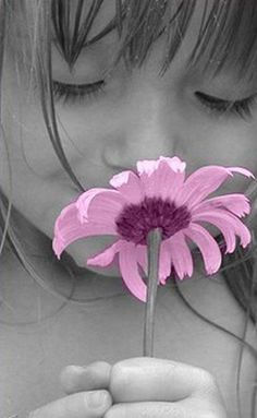 Black and white with Purple Flower