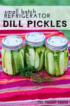 Small Batch Refrigerator Dill Pickles - Refrigerator - Trending Refrigerator for sales. - Not enough cucumbers to make a big batch of dill pickles? No worries. Here's a recipe that will make a small batch of refrigerator dill pickles. Home Canning, Canning Jars, Canning Recipes, Easy Canning, Canning 101, Dishes Recipes, Canning Pickles, Refrigerator Dill Pickles, Refrigerator Pickle Recipes