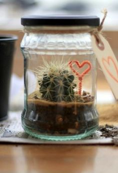 Fantastic Terrarium Idea!! - Want to do it yourself? Click on the image for the tutorial!