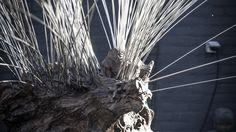 Artwork Magnetic under construction   Lebesque Design