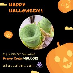 Happy Halloween Succulent Sale! Get your rare succulent houseplants online. Worldwide Shipping. Use Discount code: HALLO15 We bring joy to your home gardening experience.