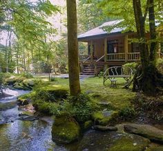 My dream of having a creek in front of my cabin!!