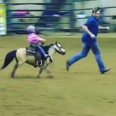 Funny Horse Videos, Funny Horse Memes, Funny Horses, Funny Animal Videos, Funny Animals, Cute Animals, Trick Riding, Horse Riding Tips, Horse Girl