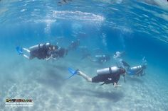 Kerry leads the way for two groups of students to the deeper open water dive site :)