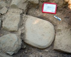 A 500-pound stone tablet found in the foundation of an Etruscan temple at the Poggio Colla site in Tuscany.... Archaeologists strongly suspect that the text is religious, but have yet to fully translate the find.