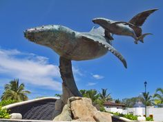 Official tourist guide with information on hotels, restaurants, activities, reservations and places to visit during your visit to Puerto. Puerto Vallarta Vacations, Two Worlds, Whale Art, Travel Memories, Best Sites, Picture Collection, Destination Weddings, Places To Visit, City