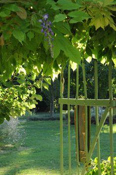 Le Pavillon Vert near Avignon #green #verdure #vert #nature #tree #tourism #tourismepaca #tourismpaca #south #france #avigon #provence