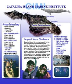 Catalina Island Marine Institute Marine Biology, Pirate Life, Sailors, Great Places, Places Ive Been, Dream Big, Vacation Destinations, Marines, Pirates