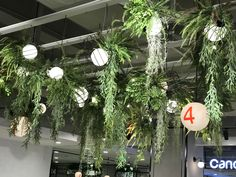 Qingdao, Christmas Wreaths, Layout, Holiday Decor, Home Decor, Decoration Home, Page Layout, Room Decor, Home Interior Design