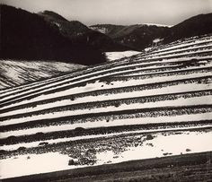 Martin Martinček: Polia na konci zimy:1957 - 1964 Monochrome, Photography, Pulley, Author, Paisajes, Lens, Monochrome Painting, Photograph, Fotografie