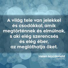 Helen Macdonald #idézet