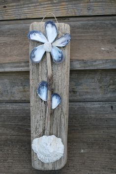 Mussel Flower on Drift Wood