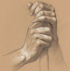 Stunning Study Anatomical by American Artist Daniel Maidman