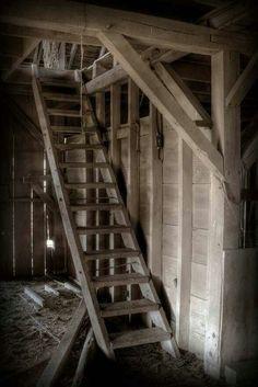 Ladder to hayloft