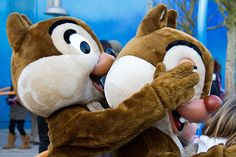 peek a boo ! chip and dale