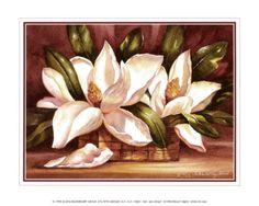 Blossoming Magnolias Art Print