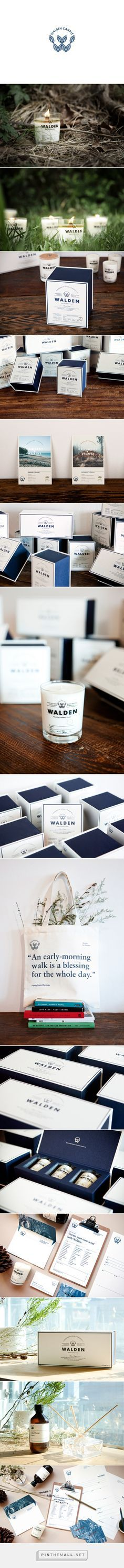 WALDEN on Behance | Fivestar Branding – Design and Branding Agency & Inspiration Gallery