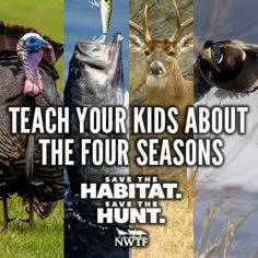 Teach your kids the joys of being outdoors early.