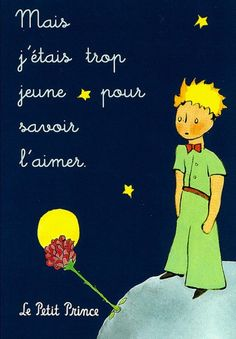 """""""Le Petit Prince"""" written by Antoine St. Exupery, a French writer who was a pilot during WWII and died after writing a book about it titled """"Flight to Arras."""" Wonderful essays too!"""