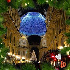 Uno splendore Milano natalizia! #igersmilano #xmas #xmastree #christmasiscoming #natale #natale2016 #natalestaarrivando #galleriavittorioemanuele #placetobe #magicmoments #team #agencylife #follow #picoftheday #bestoftheday #photooftheday #milan #milano #womboit