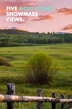 No matter where you stand in Snowmass, there are truly endless views offered in all directions. Here, we've detailed the 5 most iconic views in Snowmass that you can't leave without seeing.  Where The Sun Rises, State Of Colorado, Mountain Vacations, Aspen, Lodges, Travel Tips, Tourism, Sunrise, Beautiful Places